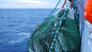 Tratamiento de ozonos a bordo de barcos